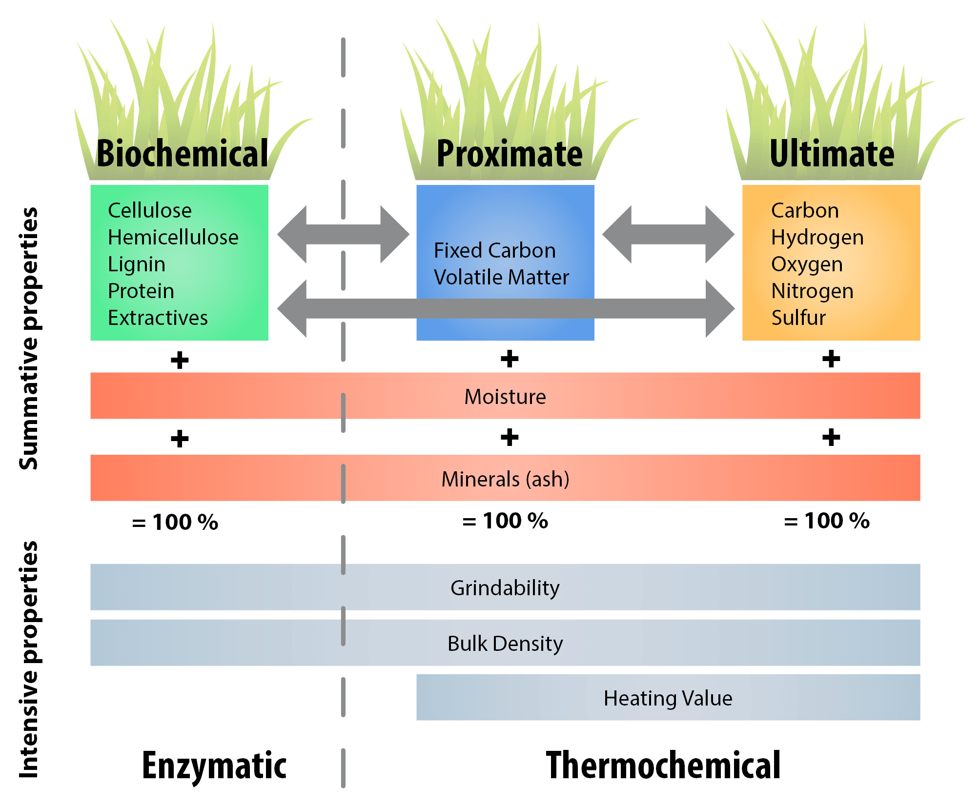 research essay on cellulosic ethanol